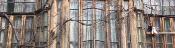 Спрос на дачи в Ленобласти «упал» на 20%