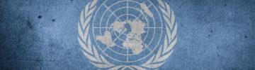 Россия на Конференции ООН поделилась опытом создания Центров управления регионами