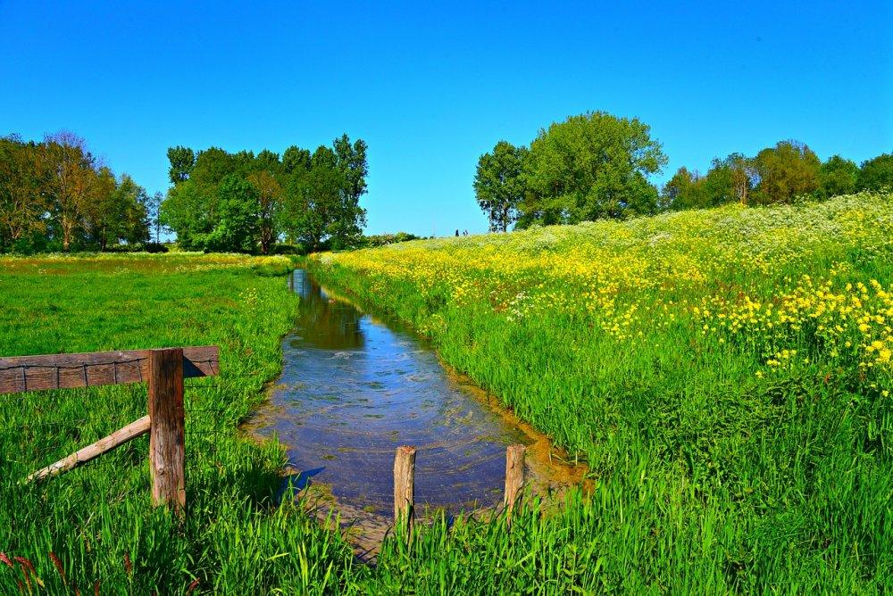 В Вознесенском построят дамбу для защиты от паводка
