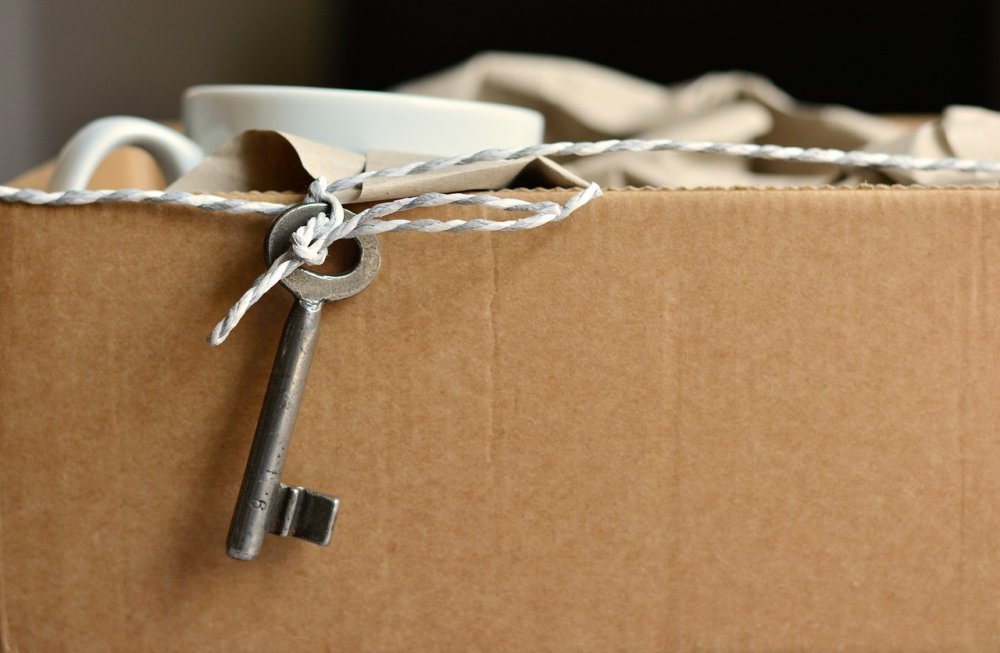 Помощь для переезда по реновации будет предоставляться в электронном виде
